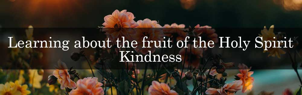 Learning about the fruit of the Holy Spirit: Kindness