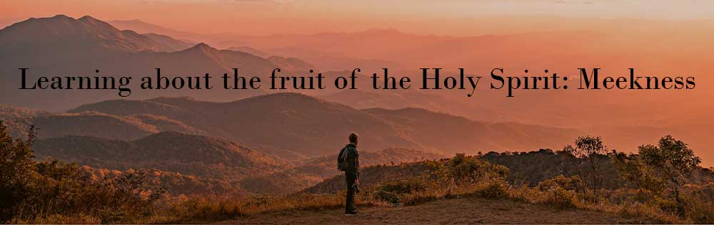 Learning about the fruit of the Holy Spirit: Meekness