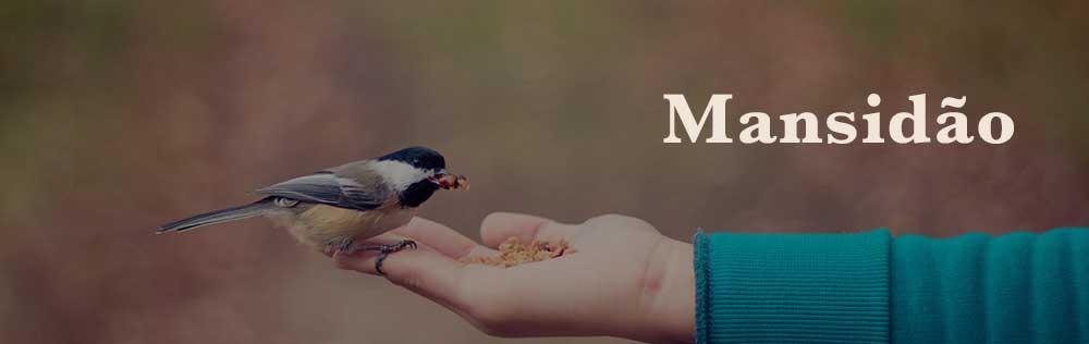 Mansidão, o fruto do Espírito em falta