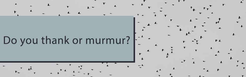 Do you thank or murmur?