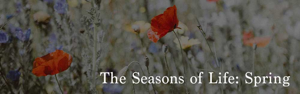 The Seasons of Life: Spring